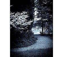 Twilight Walk Photographic Print