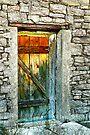 Back Door ~ Lake Valley, NM by Vicki Pelham