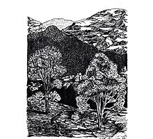 Pen and Ink Landscape Photographic Print