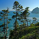 Cape Kiwanda On High by Nick Boren