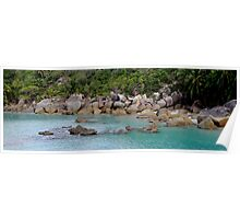Bedarra Island Dorillor Bay  Poster