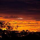 Australian Sunset, Vicenza QLD by Sally Werner