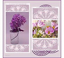 Lilacs And Cosmos Photo Picture Collage  Photographic Print