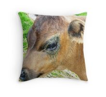 Jersey Poddy - Stokes' Farm, Kirkstall Throw Pillow