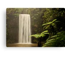 Milla Milla Falls - The Ferny Side Canvas Print