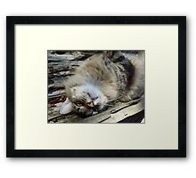 You know I'm adorable... Framed Print