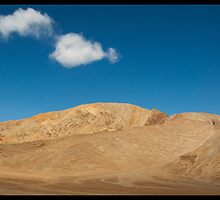 Barren Beauty by Neeraj Nema