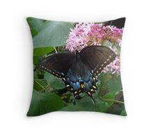 Black Eastern Swallowtail - Summer's End Throw Pillow