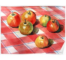 Apples on a check cloth Poster