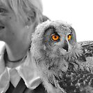 Lady falconer and eurasian eagle owl by neil harrison