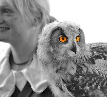 Lady falconer and eurasian eagle owl by neil harrison