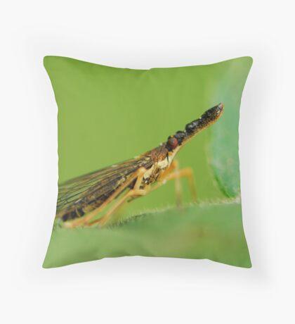 elephent nose bug Throw Pillow