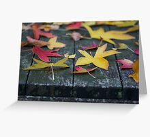 Autumn leaves resting Greeting Card
