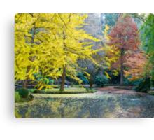 Autumn, Alfred Nicholas Memorial Gardens, Victoria, Australia. Canvas Print
