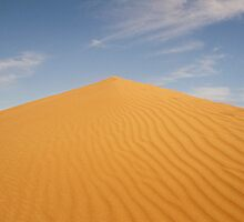 Sand dune, Simpson Desert by Steve Bass