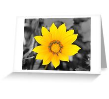 Yellow Flower with Black and White background Greeting Card
