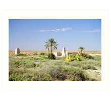 Ruins of a past time, Simpson Desert South Australia Art Print