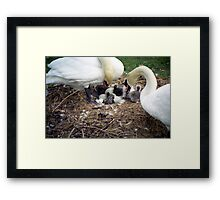 Witnessing the birth. Framed Print