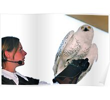Snowy owl and trainer Poster