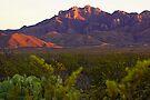 Chisos Mountains, Texas by Tamas Bakos