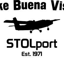 Lake Buena Vista STOLport by epcod