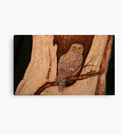 The Australian Powerful Owl Canvas Print