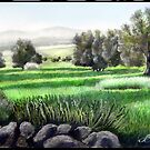 "Bhalil area olive trees "" larger version"" by versatileArt"