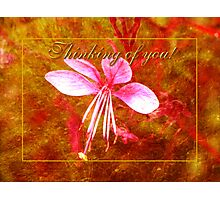 thinking of you (for Polly470) Photographic Print