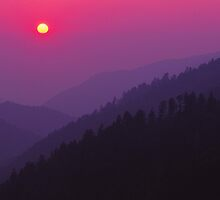 MISTY SUNSET,MORTON OVERLOOK by Chuck Wickham