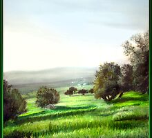 "bhalil area olive trees ""small version"" by versatileArt"