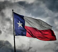 Texas Flying in the Wind by Pat Moore