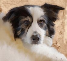 Collie Dog - Muppet by Sarahbob