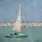 Leisure sailing ©  by Dawn M. Becker