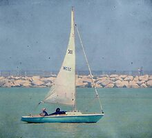 Leisure sailing ©  by Dawn M. Becker