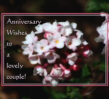 Happy Anniversary (for fotoflossy & hubby) by vigor