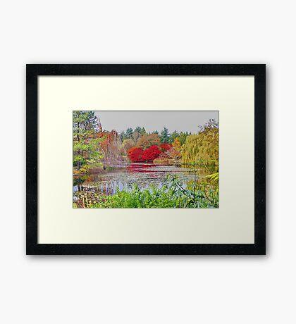 VanDusen Botanical Gardens Vancouver, Framed Print