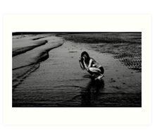 Beach photographer (2) Art Print