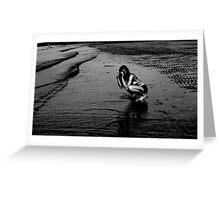 Beach photographer (2) Greeting Card