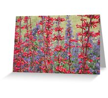Red & Purple Greeting Card