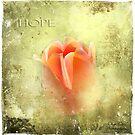 Hope by Olga