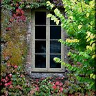 ~ A Window on the Past ~ by LeeoPhotography