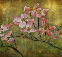 Card. Pink Dogwood and Irises. by frannies-cards