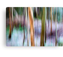 Winter Trees - Killarney National Park Canvas Print