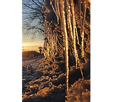 Cup and Icicles Photographic Print