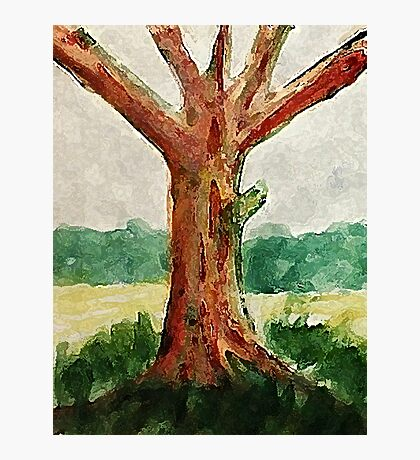 The Tree, with all its age showing, watercolor Photographic Print