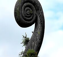 Spiral by Kayleigh Walmsley