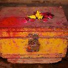 Secret Box by David Reid