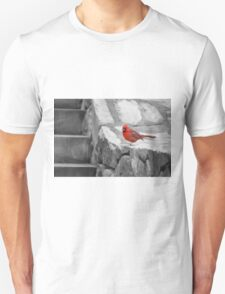 The Cardinal Picture T-Shirt