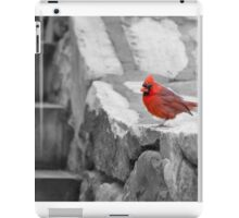 The Cardinal Picture iPad Case/Skin