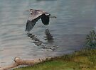 Codorus Great Blue Heron by Charlotte Yealey